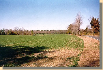 Frayser's Farm - Looking North