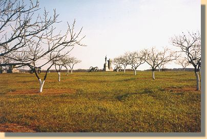 The Peach Orchard - 2000